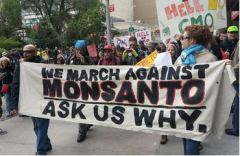 monsanto_march_against_140525